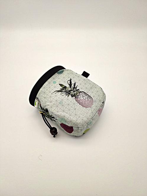 Pineaple Chalk Bag