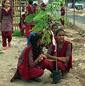 Girls planting trees.jpg