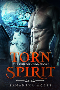 Torn Spirit-eBook.jpg