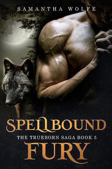 Spelbound Fury eBook Cover.jpg