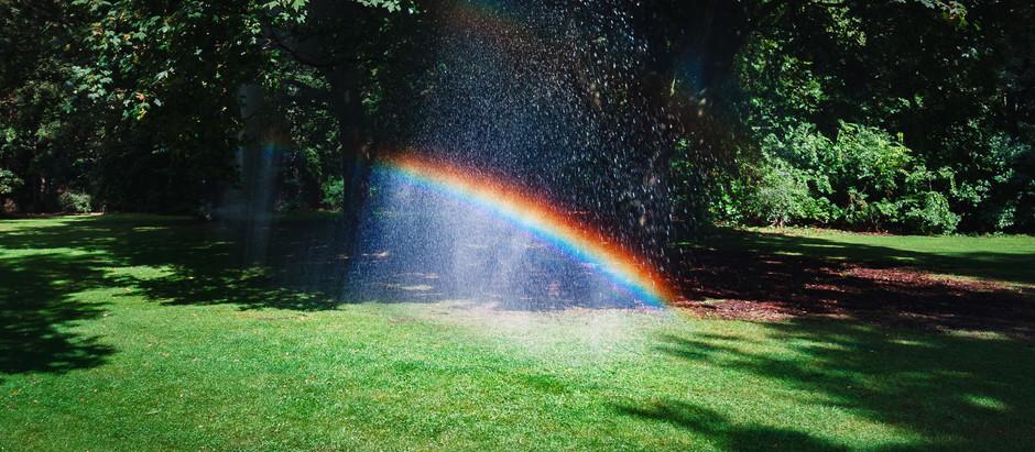 虹は何色?