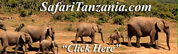 SafariTanzania.png
