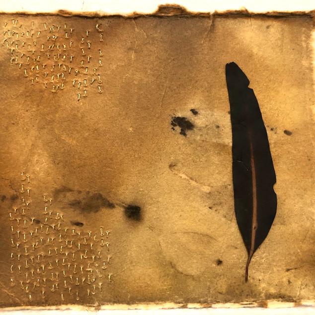 Gabrielle Mordy. 4th January 2020, Morton National Park 5.  Plant dyed hahne mühle paper, burnt leaf & metallic thread. 13 x 15cm