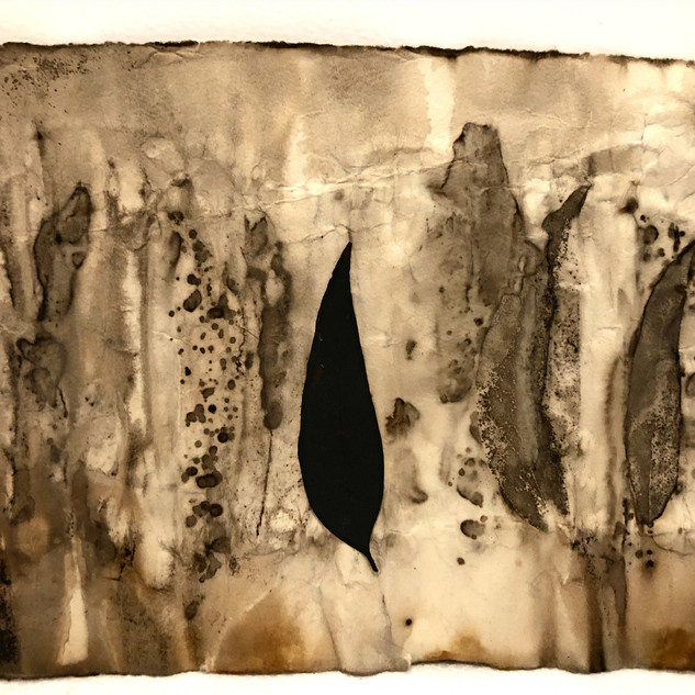 Gabrielle Mordy. 4th January 2020, Morton National Park.  Arches paper with plant dye & burnt leaf, 19 x 25cm