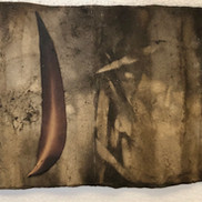 Gabrielle Mordy.  4th January 2020, Morton National Park 17. Plant dyed hahnemühle paper with burnt leaf. 12.5 x 35cm