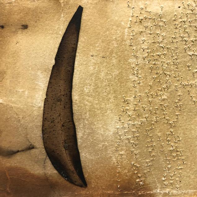 Gabrielle Mordy. 4th January 2020, Morton National Park 13. Plant dyed hahnemühle paper, burnt leaf & metallic thread. 13 x 16cm