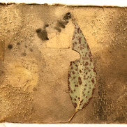 Gabrielle Mordy. 4th January 2020, Morton National Park 8. Plant dyed hahnemühle paper, burnt leaf & metallic thread. 12.5 x 17.5cm