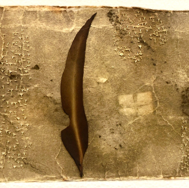 Gabrielle Mordy.  4th January 2020, Morton National Park 3. Plant dyed hahnemühle paper & metallic thread with burnt leaf. 13 x 26.5