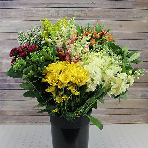 Buy by the Box: Mountain Wildflowers