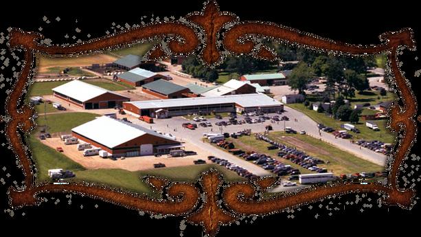 David Carson Farms & Auction Services Ltd.