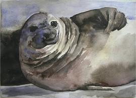 Seal, 2012