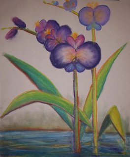 Orchid, 2015