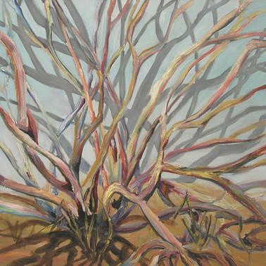 Growth, 2006
