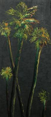 Palm trees, 2006