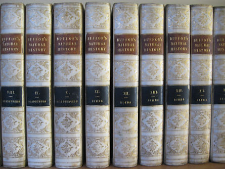 rare books hampshire, antique books hampshire, unusual books hampshire, rare books, antique books