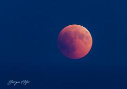 Ecliss di Luna 27 luglio 2018