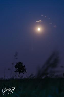 Congiunzione Luna, Marte e Spica 14.4.2014.jpg