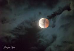 Luna in eclissi_GHR7156