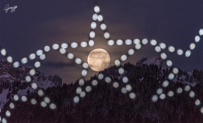 _DSC3035bis-luna e stelle firma
