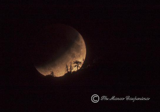 eclisse parziale Luna - M.Gasperina
