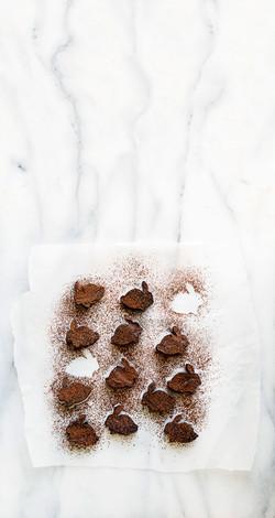 Chocolate-fudge-bunnies copy
