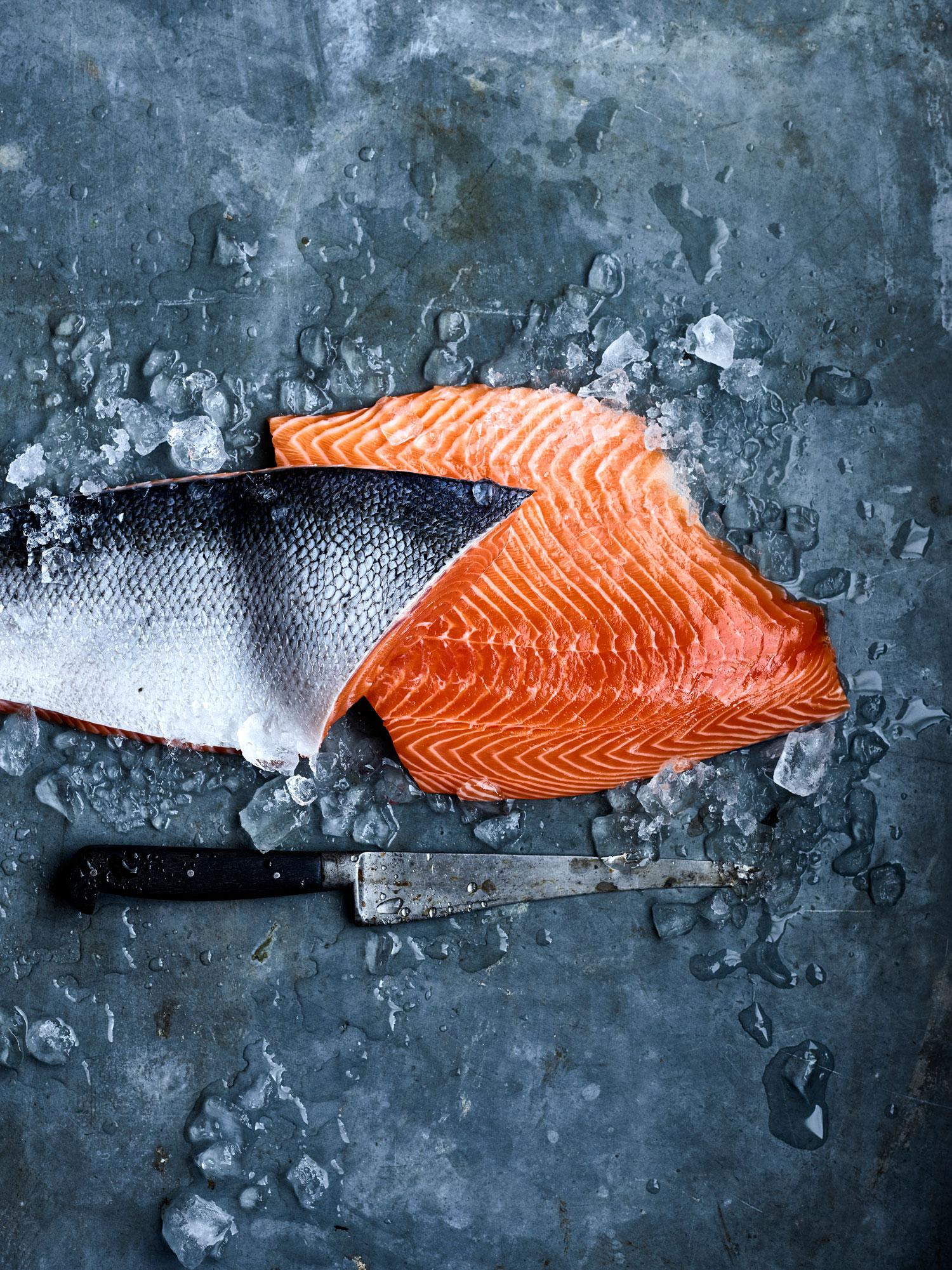 Salmon-on-ice copy