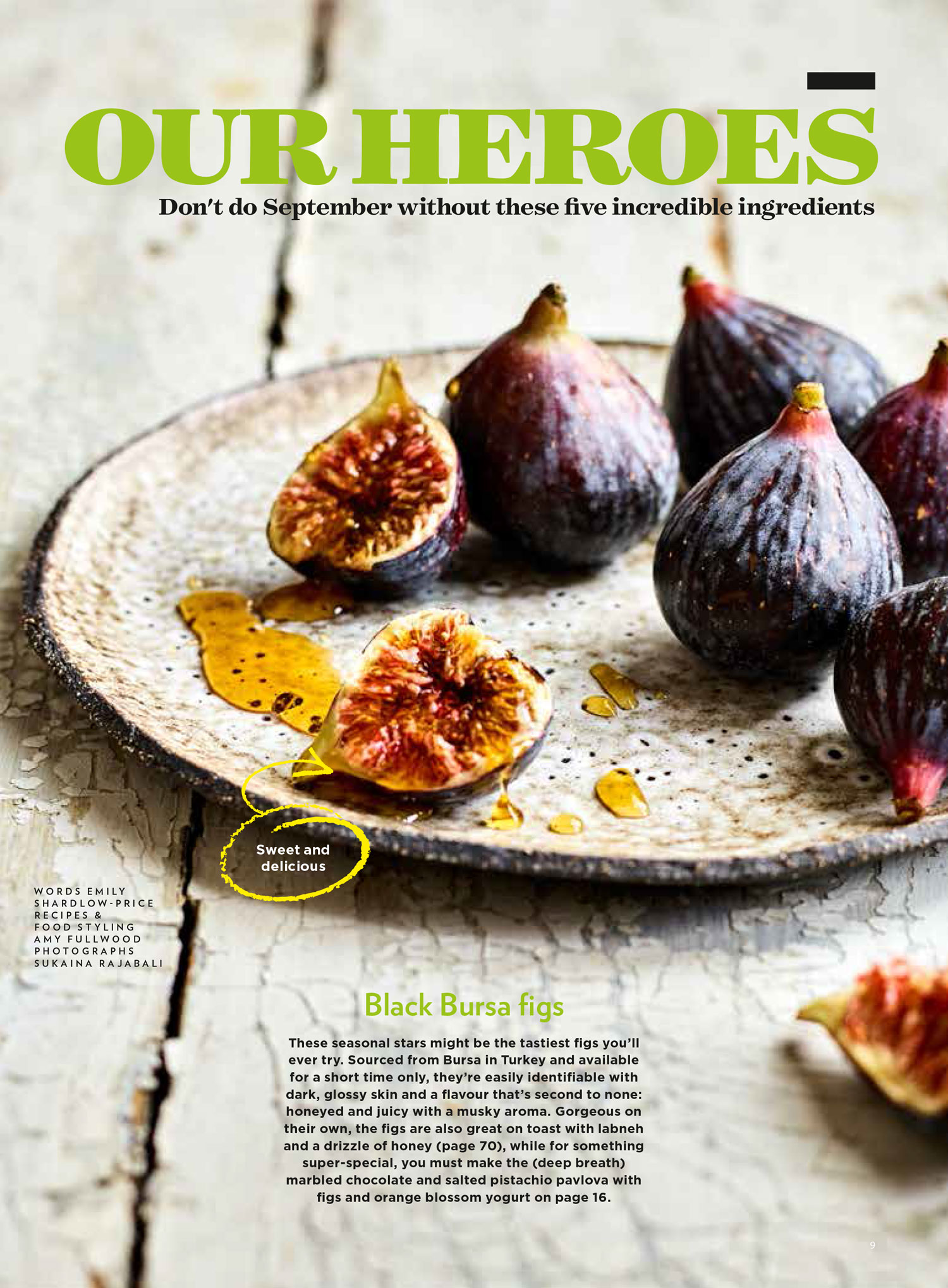 Figs-eat copy