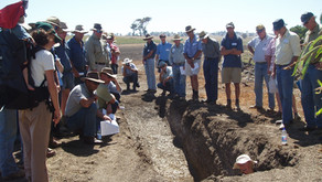 Cool soils project: 35 cool farmers needed