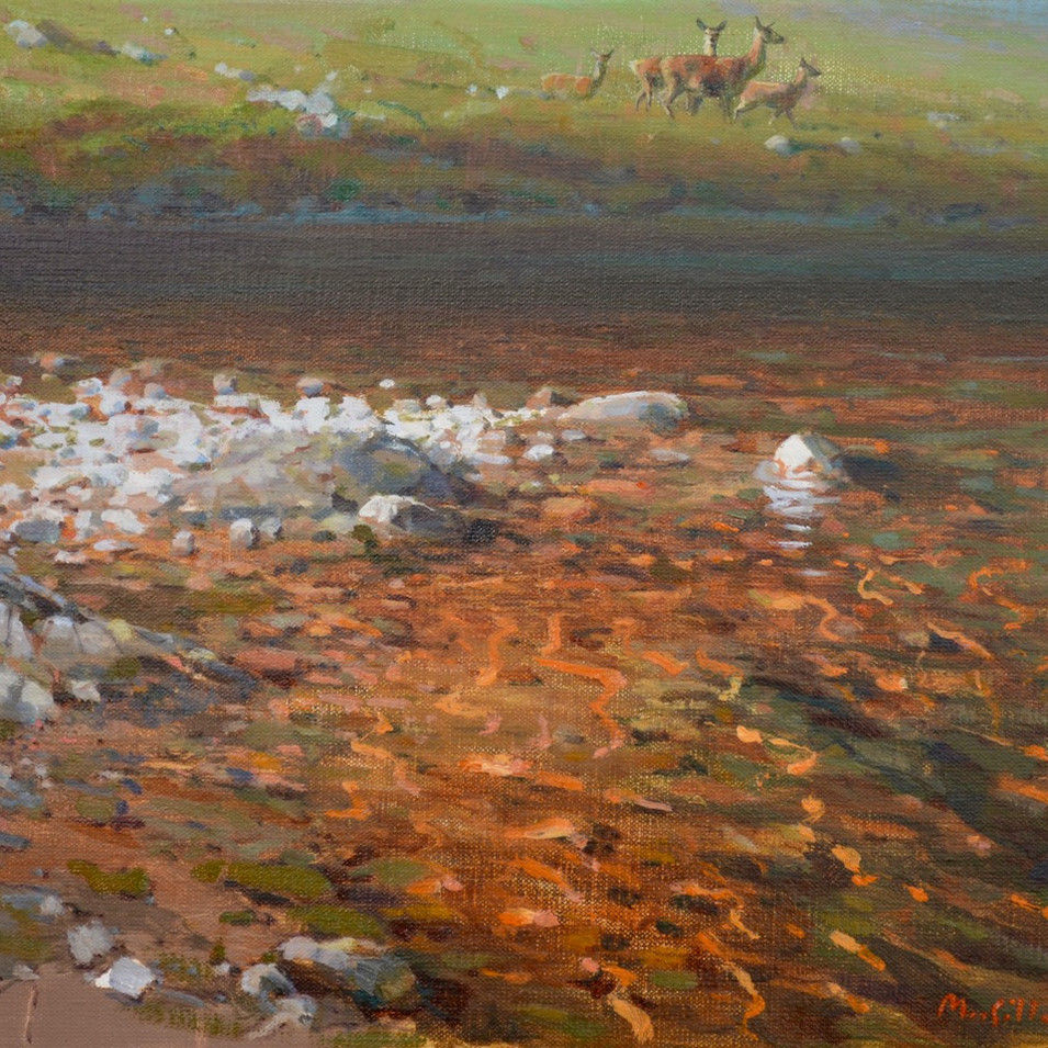 SUMMER HINDS BY THE LOCH