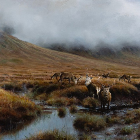 THE BLACKMOUNT STAGS