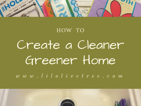 How to Create a Cleaner Greener Home- on a budget