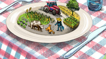 Une politique agricole européenne résolument verte:virage prometteur ou dérapage dangereux ?