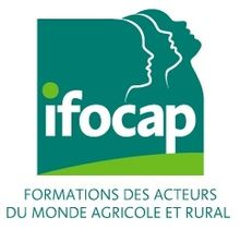 Logo_ifocap_encadré