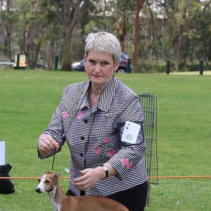 Juliette Parramatta Kennel Club 2.jpg