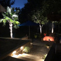 Dallas and Fort Worth Landscape Lighting