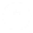 ICON UNKNOWN WITT.png