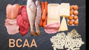 La prise de BCAA seule ne serait pas efficace pour la synthèse musculaire