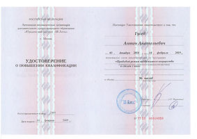 Удостоверение  Гусев А.А..jpg