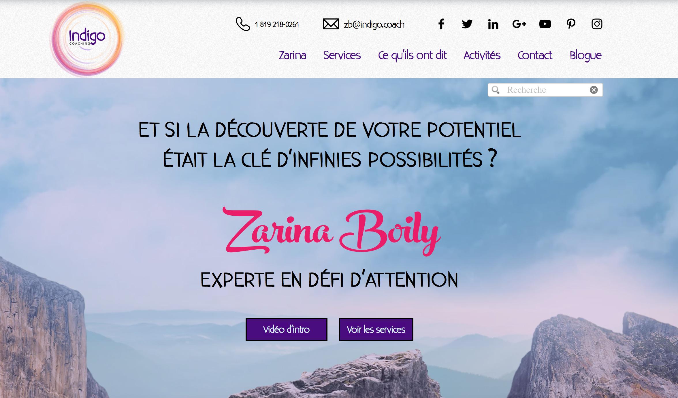 Site Web Indigo