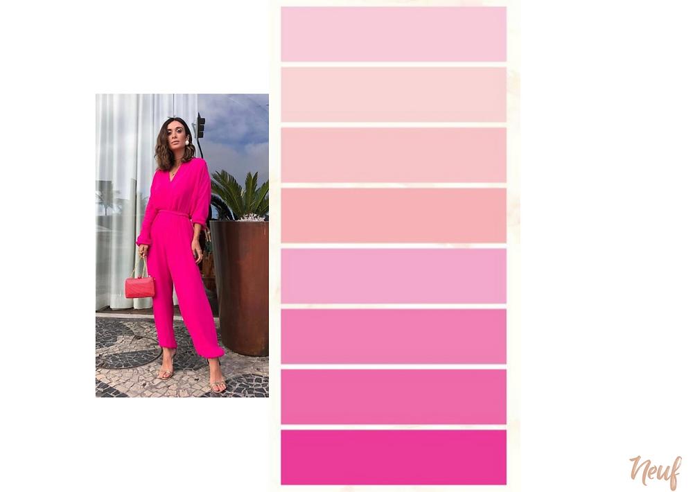rosa cores quentes e cores frias