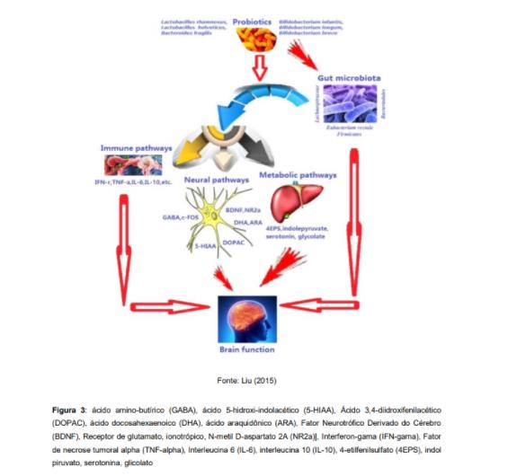 Probióticos e saúde mental