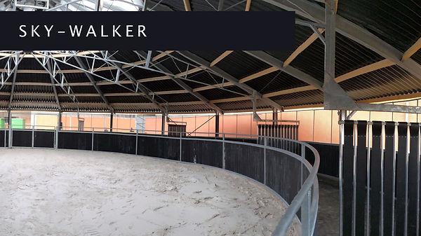 Sky-Walker.jpg