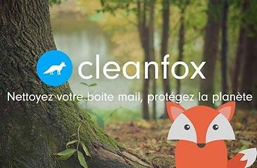 cleanfox1.jpg
