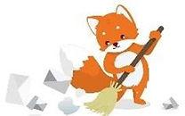cleanfox2.jpg