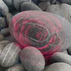 ja rose und stein.jpg