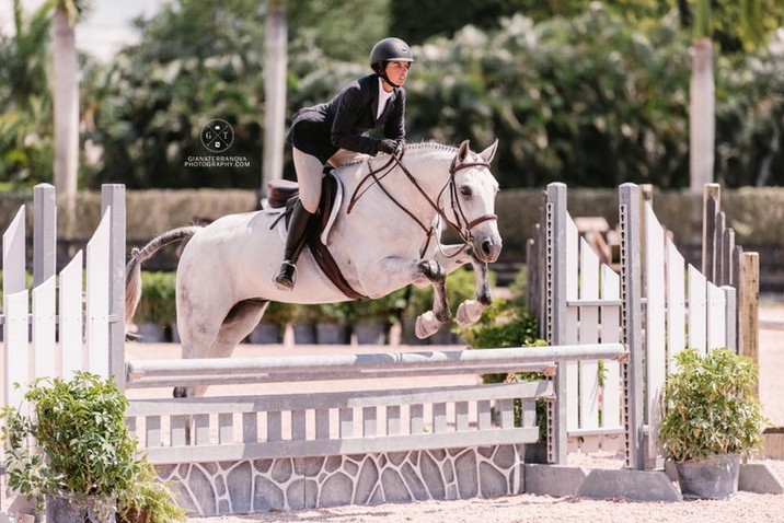 Owner and Trainer, Samantha, horseshowing her horse Classic in the hunter ring.