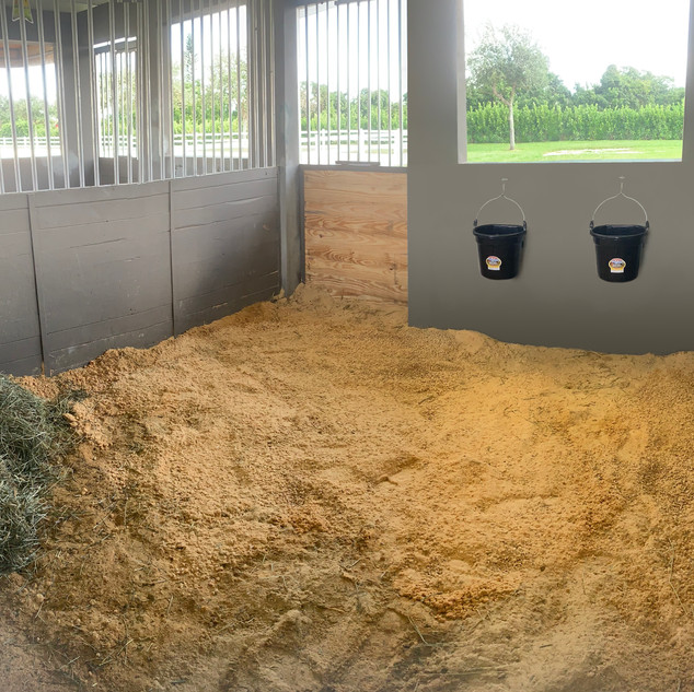 Large stalls at Strong Current Stables. The horses have Hay, water and ample amount of shavings at all times.