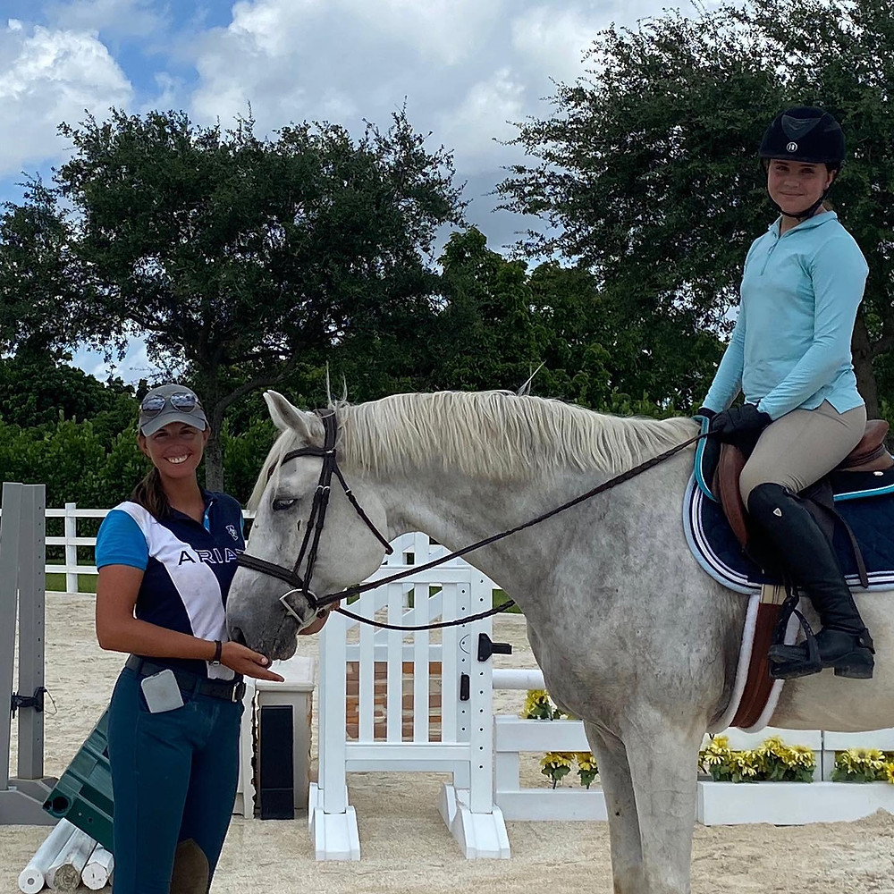 horse show, own horse, low level jumper, horse shopping, horse search
