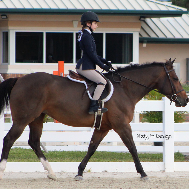 Petunia & Strong Current Stables lesson horse Cookie