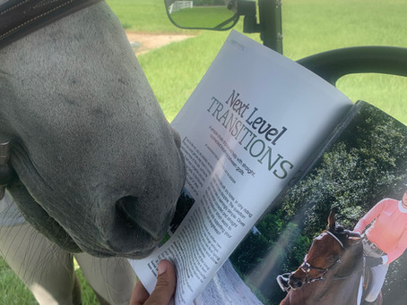 Samantha is now a Horse Illustrated Contributor!